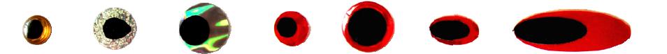 目玉シール